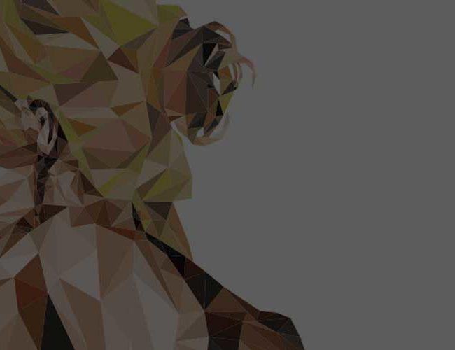 1920x500-mujer-espalda